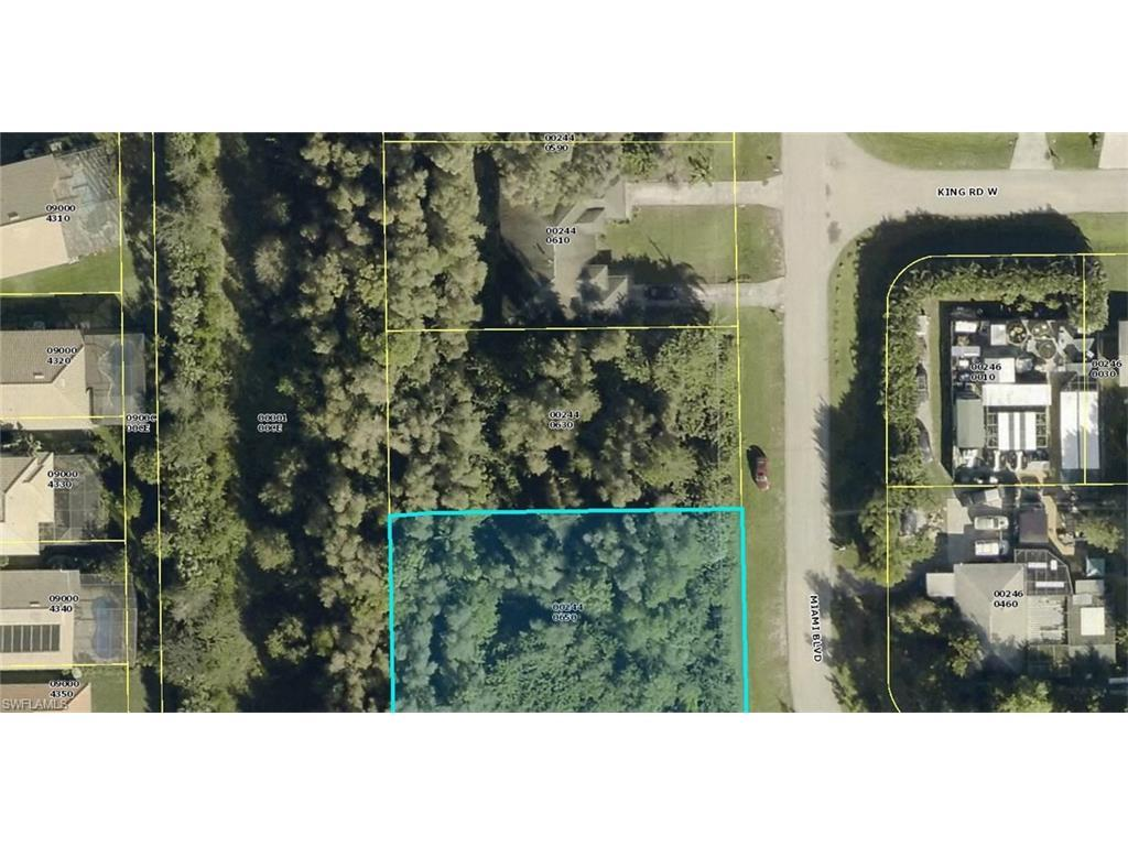 19232/236 Miami Blvd, Fort Myers, FL 33967 (#216055971) :: Homes and Land Brokers, Inc