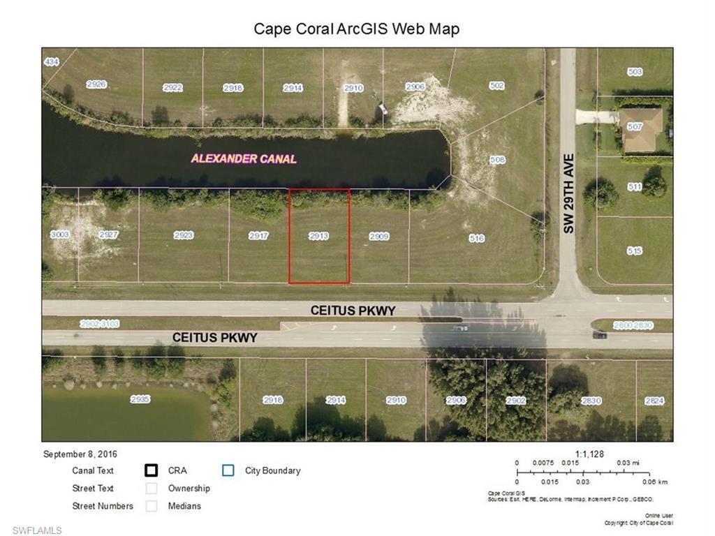 2913 Ceitus Pky, Cape Coral, FL 33991 (MLS #216056610) :: The New Home Spot, Inc.