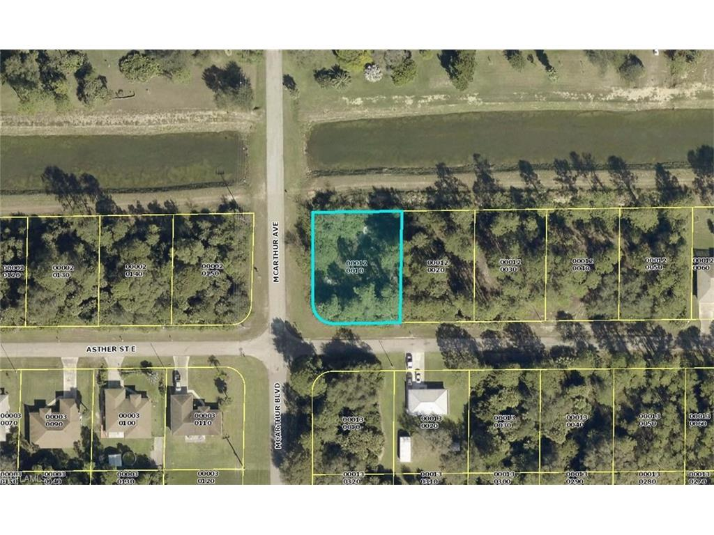 1003 Asther St, Lehigh Acres, FL 33974 (MLS #216058243) :: The New Home Spot, Inc.