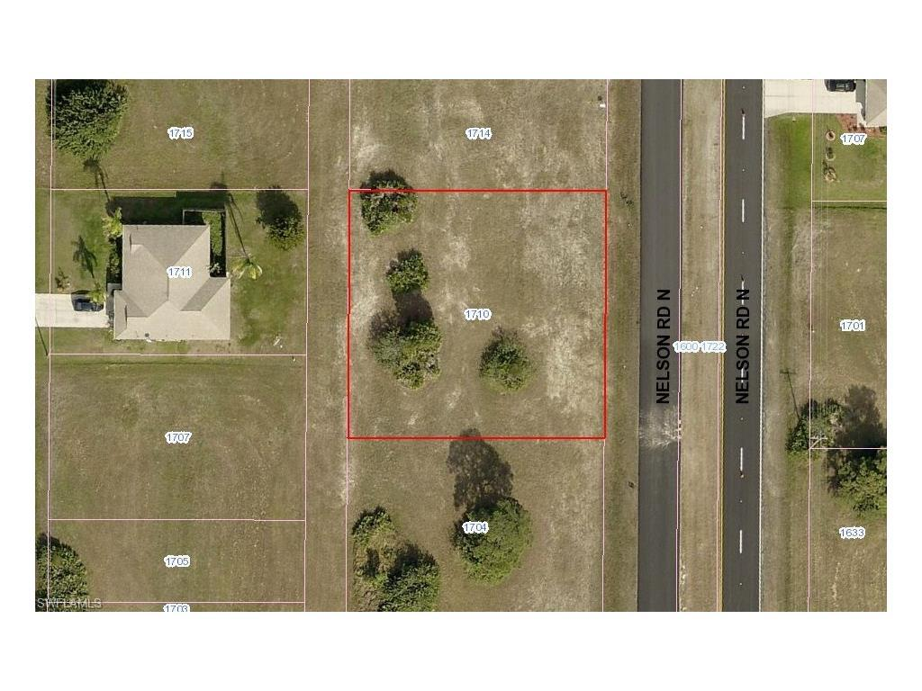 1710 Nelson Rd N, Cape Coral, FL 33993 (MLS #216058321) :: The New Home Spot, Inc.