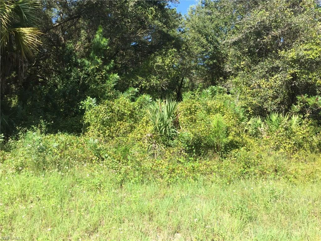 1707 5th Ave, Lehigh Acres, FL 33972 (#216058981) :: Homes and Land Brokers, Inc