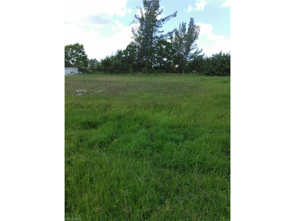 3110 SW 22nd Ave, Cape Coral, FL 33914 (#216060107) :: Homes and Land Brokers, Inc