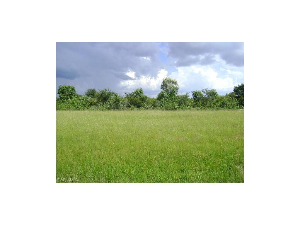 329 SW 26th Pl, Cape Coral, FL 33991 (MLS #216060173) :: The New Home Spot, Inc.