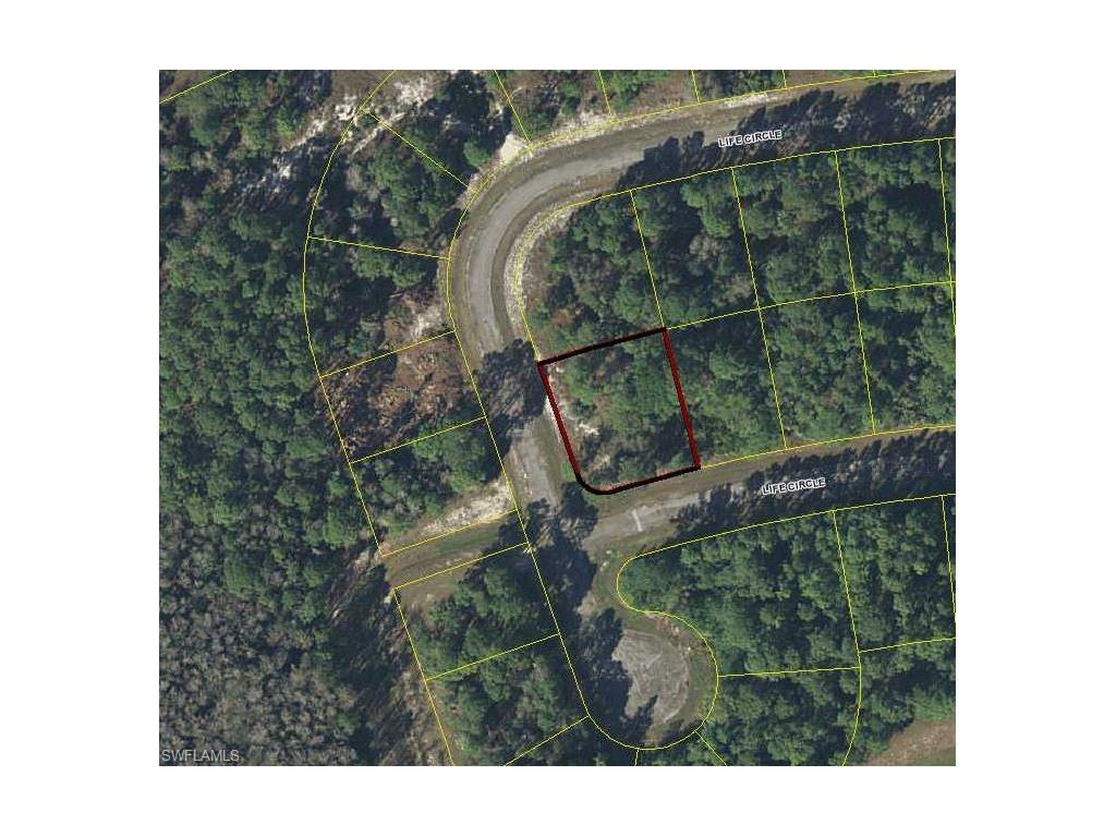 8026 Life Cir, Labelle, FL 33935 (MLS #216060542) :: The New Home Spot, Inc.