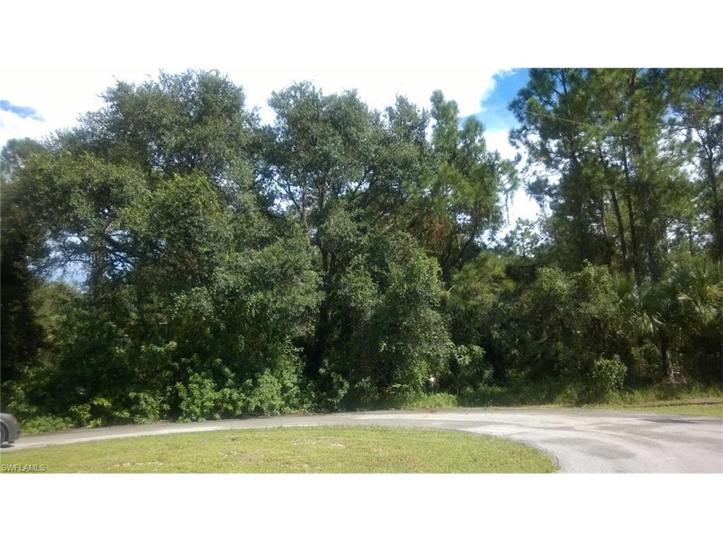 2025 Castleton Ter, Labelle, FL 33935 (MLS #216060668) :: The New Home Spot, Inc.