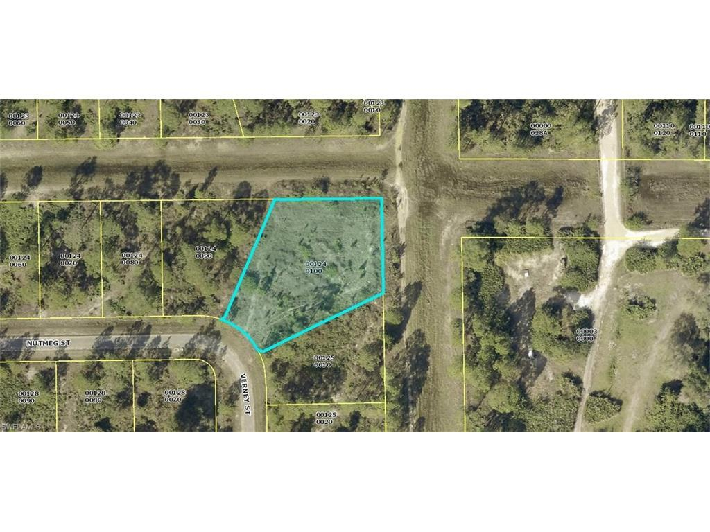 366 Nutmeg St, Lehigh Acres, FL 33972 (MLS #216060674) :: The New Home Spot, Inc.