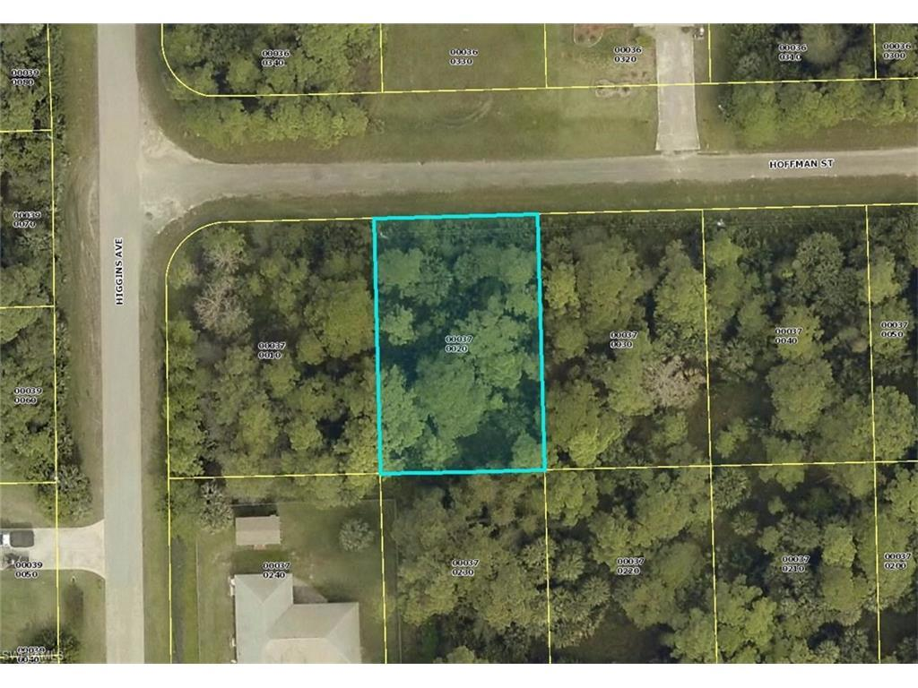 3861 Hoffman St, Fort Myers, FL 33905 (MLS #216060995) :: The New Home Spot, Inc.