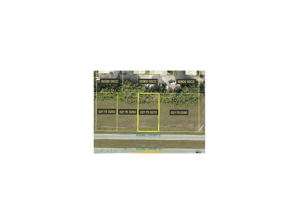 923 Kismet Pky E, Cape Coral, FL 33909 (#216061525) :: Homes and Land Brokers, Inc