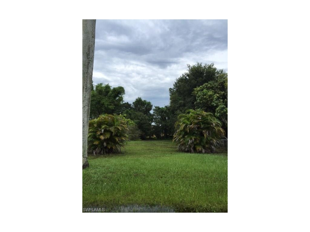 663 Pine St, Fort Myers, FL 33916 (#216062582) :: Homes and Land Brokers, Inc