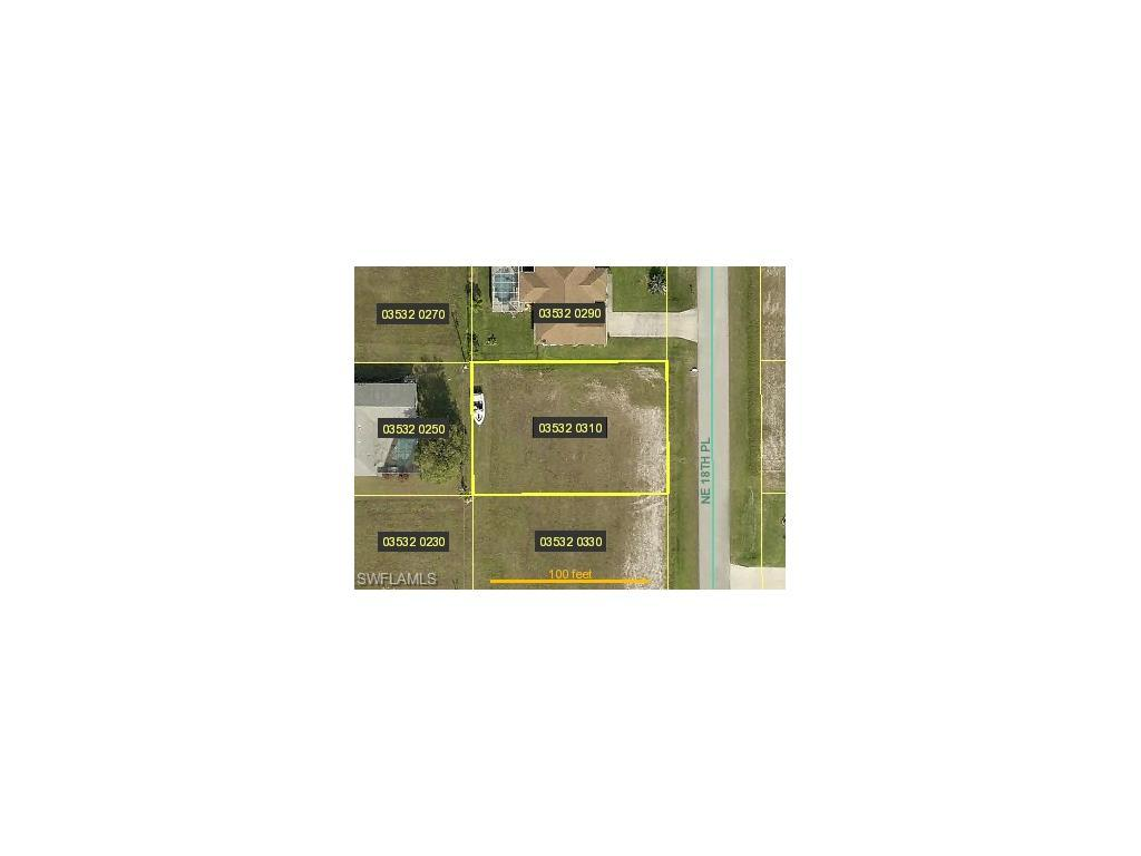 1520 NE 18th Pl, Cape Coral, FL 33909 (#216063161) :: Homes and Land Brokers, Inc