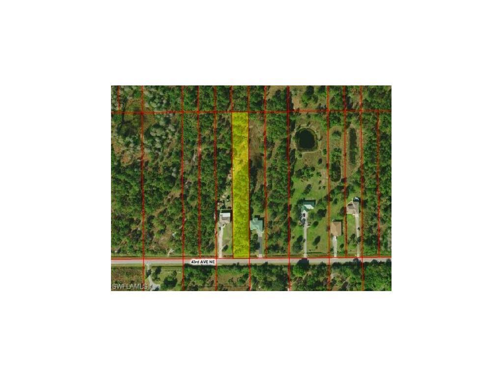 43rd Ave NE, Naples, FL 34120 (MLS #216064605) :: The New Home Spot, Inc.