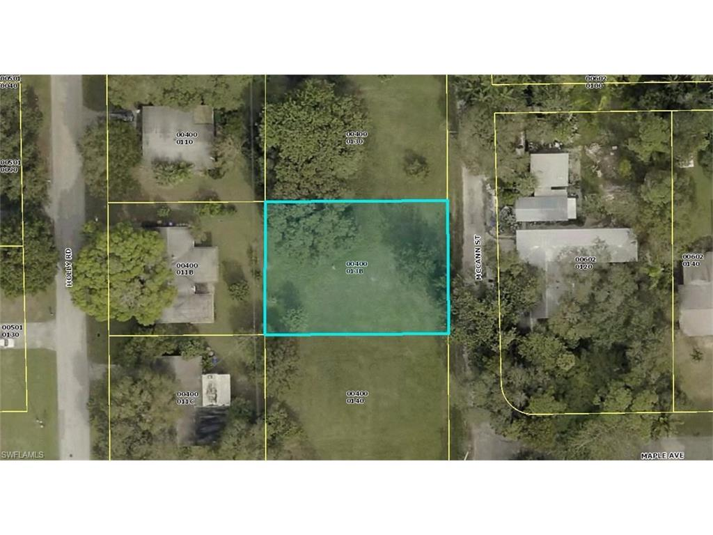 2930 Mccann St, Fort Myers, FL 33901 (#216064942) :: Homes and Land Brokers, Inc
