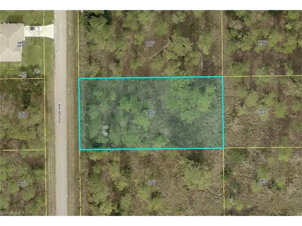 1018 Euclid Ave, Lehigh Acres, FL 33972 (#216065120) :: Homes and Land Brokers, Inc