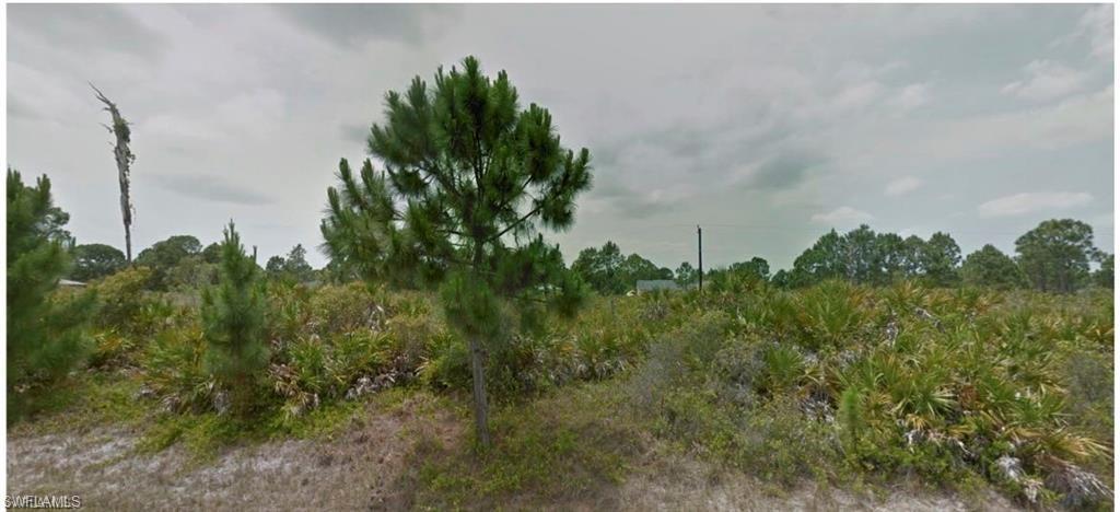 1130 Seacrest Drive - Photo 1