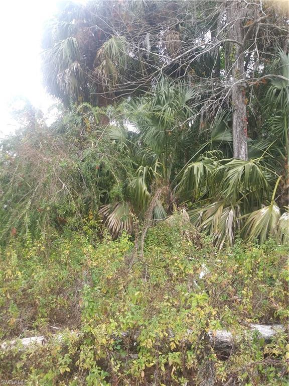 7670 Peyraud Dr, North Fort Myers, FL 33917 (MLS #218006843) :: RE/MAX Realty Team