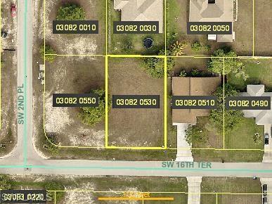 205 SW 16th Ter, Cape Coral, FL 33991 (MLS #218021647) :: RE/MAX DREAM