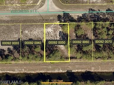 1242 Edelweiss St E, Lehigh Acres, FL 33974 (MLS #218022102) :: The New Home Spot, Inc.