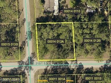 3301 E 21st St, Alva, FL 33920 (MLS #218022372) :: The New Home Spot, Inc.