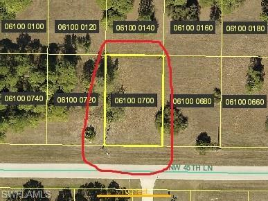 3907 NW 45th Ln, Cape Coral, FL 33993 (#218025184) :: The Dellatorè Real Estate Group