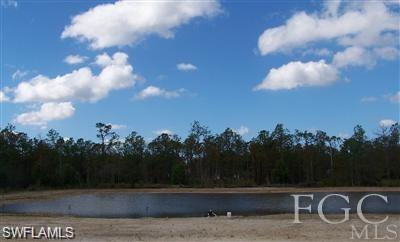 12400 Musket Ln, Fort Myers, FL 33912 (MLS #218027122) :: The New Home Spot, Inc.