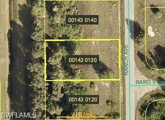 308 Ranch Ave, Lehigh Acres, FL 33974 (MLS #218029116) :: The New Home Spot, Inc.