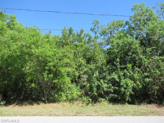 3492 Liberty St, Port Charlotte, FL 33948 (MLS #218030544) :: The New Home Spot, Inc.