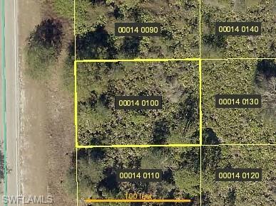339 Bell Blvd S, Lehigh Acres, FL 33974 (MLS #218032591) :: Clausen Properties, Inc.