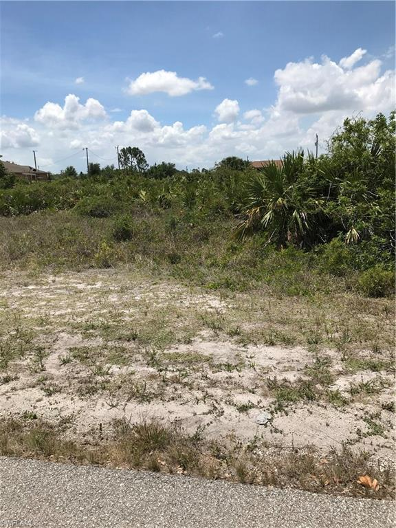 2507 24th St W, Lehigh Acres, FL 33971 (MLS #218033005) :: RE/MAX Realty Group