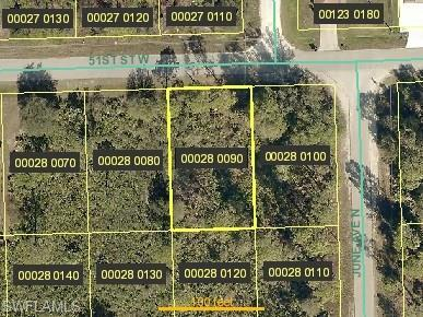 2903 51st St W, Lehigh Acres, FL 33971 (MLS #218037394) :: RE/MAX DREAM
