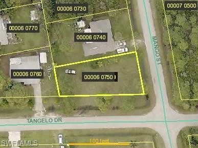 3902 Mango St, St. James City, FL 33956 (MLS #218037823) :: Clausen Properties, Inc.