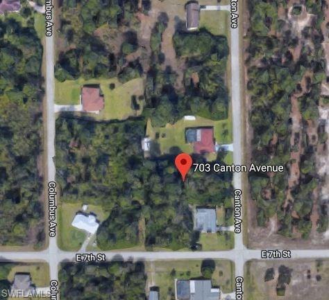 703 Canton Ave, Lehigh Acres, FL 33972 (MLS #218037914) :: RE/MAX DREAM