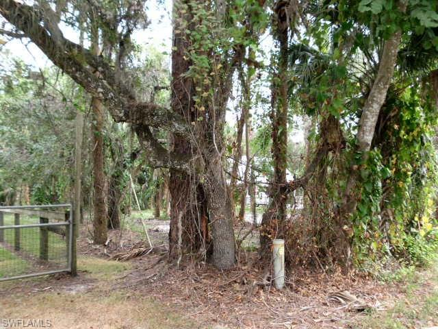 1260 Captain Hendry Dr, Labelle, FL 33935 (MLS #218038426) :: Clausen Properties, Inc.