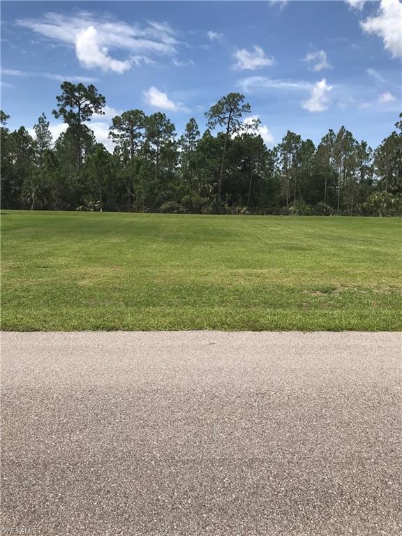 9766 Creekwood Ln, Fort Myers, FL 33905 (MLS #218042655) :: RE/MAX Realty Team