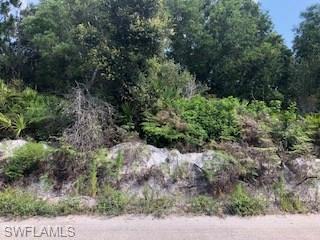 6450 Mannheim Rd, Bokeelia, FL 33922 (MLS #218042979) :: The New Home Spot, Inc.