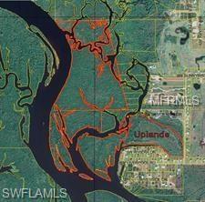 SW Sunnybreeze Rd, Arcadia, FL 34269 (MLS #218043319) :: Clausen Properties, Inc.