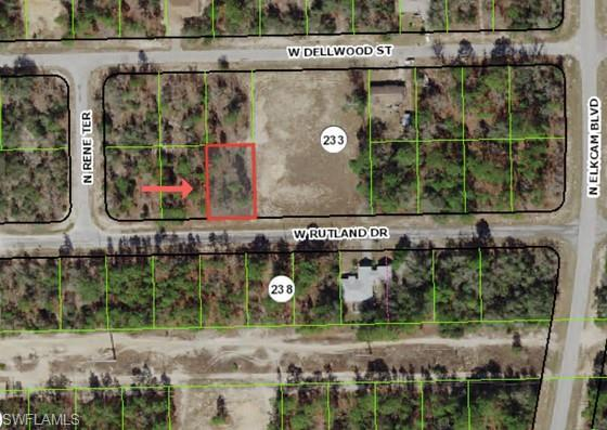 2879 W Rutland Dr, Citrus Springs, FL 34433 (MLS #218053074) :: RE/MAX Realty Team