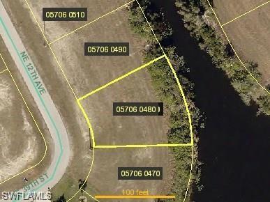 3903 NE 12th Ave, Cape Coral, FL 33909 (MLS #218055251) :: Clausen Properties, Inc.
