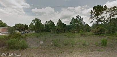 333 Appaloosa Ave, Clewiston, FL 33440 (MLS #218065064) :: Clausen Properties, Inc.