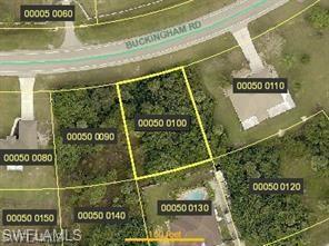8151 Buckingham Rd, Fort Myers, FL 33905 (MLS #218065778) :: The New Home Spot, Inc.