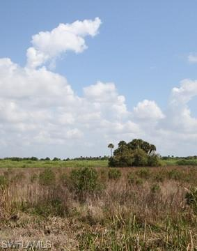 9023 E Broad Ct, Labelle, FL 33935 (MLS #218067569) :: The New Home Spot, Inc.