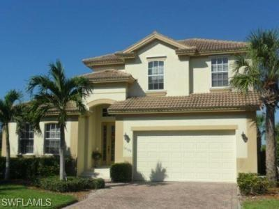 16126 Chelsea Lyn Way, Fort Myers, FL 33908 (MLS #218068407) :: RE/MAX DREAM