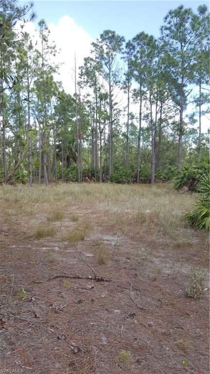 1113 Leroy Ave, Lehigh Acres, FL 33972 (MLS #218075097) :: Clausen Properties, Inc.