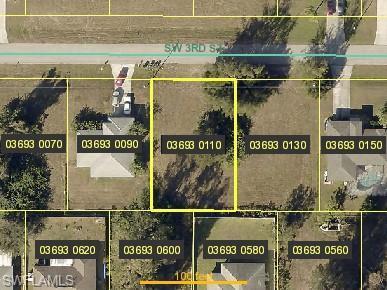 1732 SW 3rd St, Cape Coral, FL 33991 (MLS #218075353) :: RE/MAX DREAM