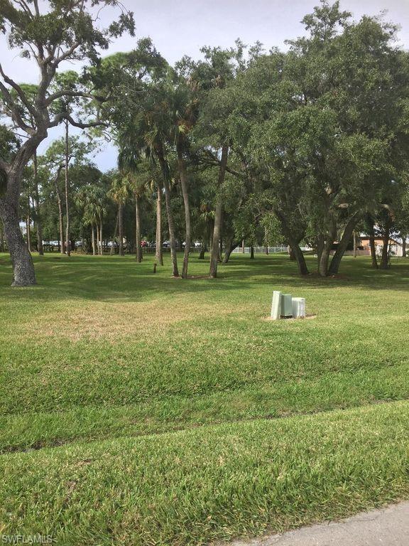 12951 Treeline Ct, North Fort Myers, FL 33903 (#218083074) :: The Key Team