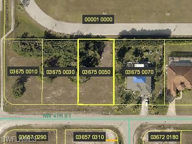 1521 NW 4th St, Cape Coral, FL 33993 (MLS #218083313) :: RE/MAX Realty Team