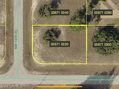 219 NW 14th Pl, Cape Coral, FL 33993 (MLS #218083327) :: RE/MAX Realty Team