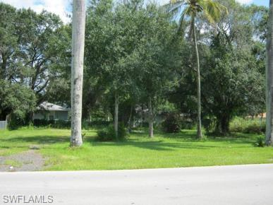 4029 Woodside Ave, Fort Myers, FL 33916 (MLS #219011263) :: RE/MAX Realty Team