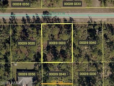 3831 18th St W, Lehigh Acres, FL 33971 (MLS #219012565) :: RE/MAX Radiance
