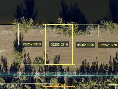 4401 NW 20th Ter, Cape Coral, FL 33993 (MLS #219014143) :: RE/MAX DREAM