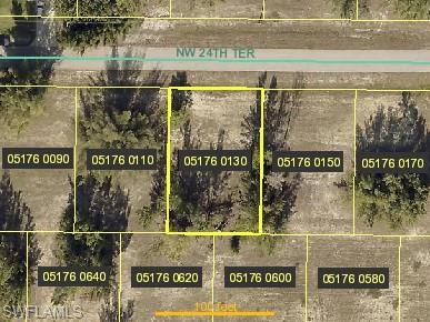4218 NW 24th Ter, Cape Coral, FL 33993 (MLS #219015374) :: Palm Paradise Real Estate